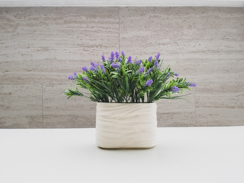 Blue spring flowers in white planter