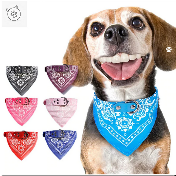 Get your pet a Bandana Collar for FREE