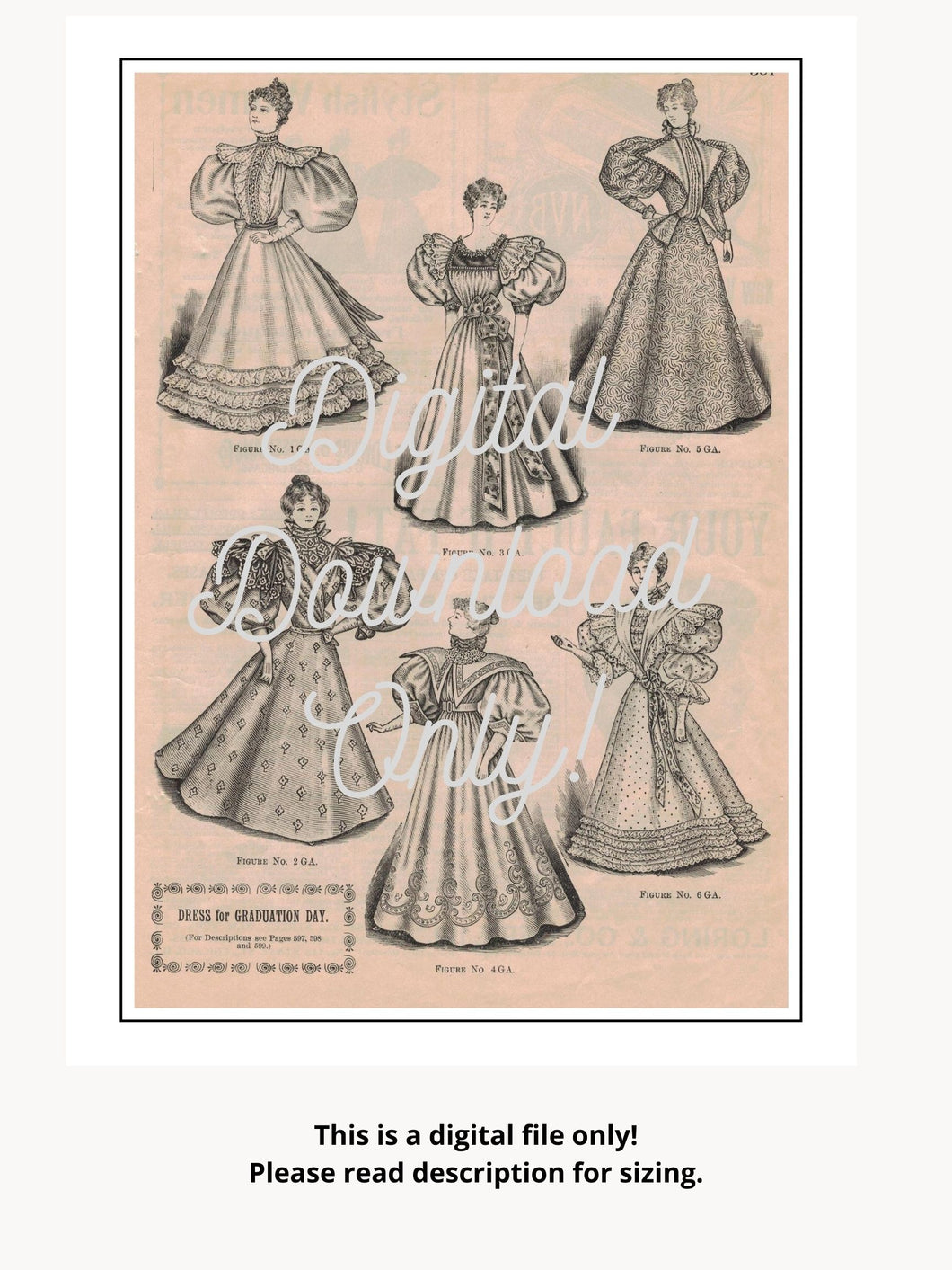 Antique Graduation Dresses