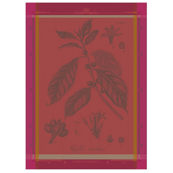 French Damask Tea Towel, Arabica Coffee -NEW!