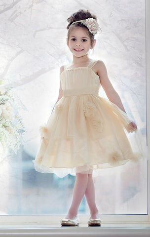 Aurora Flower Girl Dress