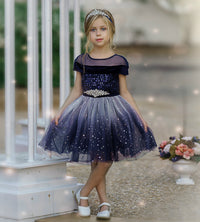 Amelie Navy Flower Girl Dress