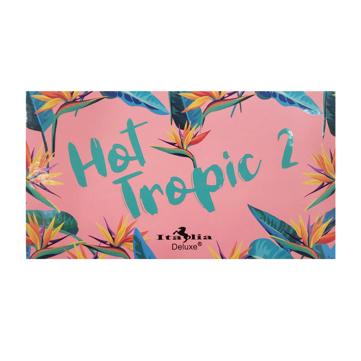Hot Tropic Palette 2