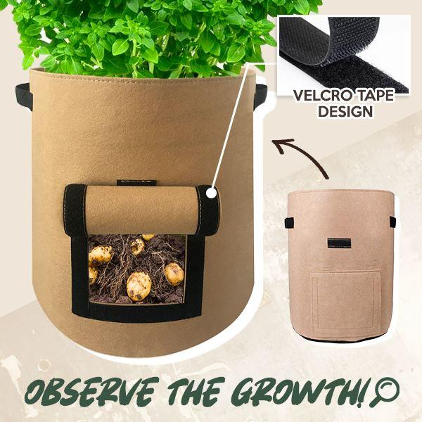 Plant Grow Bag for Home Harvesting