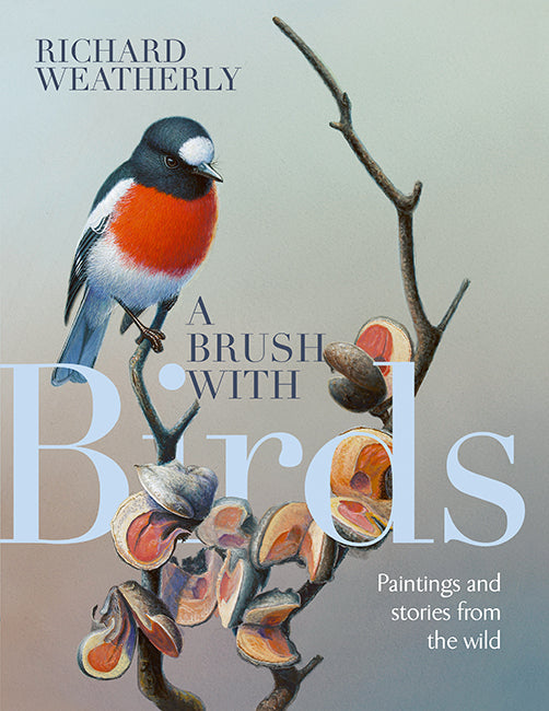 A Brush with Birds - Paintings and Stories from the Wild - Richard Weatherly