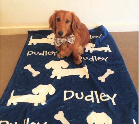 Top 6 Dachshund Gifts Under 30 The Smoothe Store