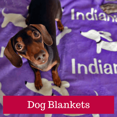 Personalized Dachshund Blankets