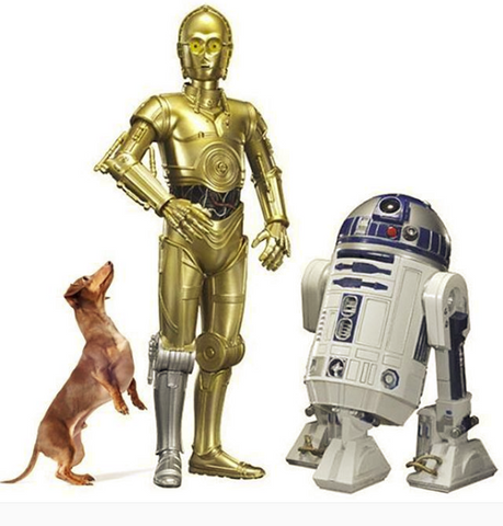 Barnababy speaks binary with R2D2 StarWeens May the 4th