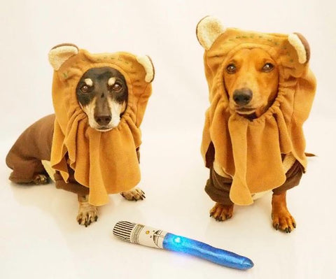 Sausage dog ewoks for may the 4th