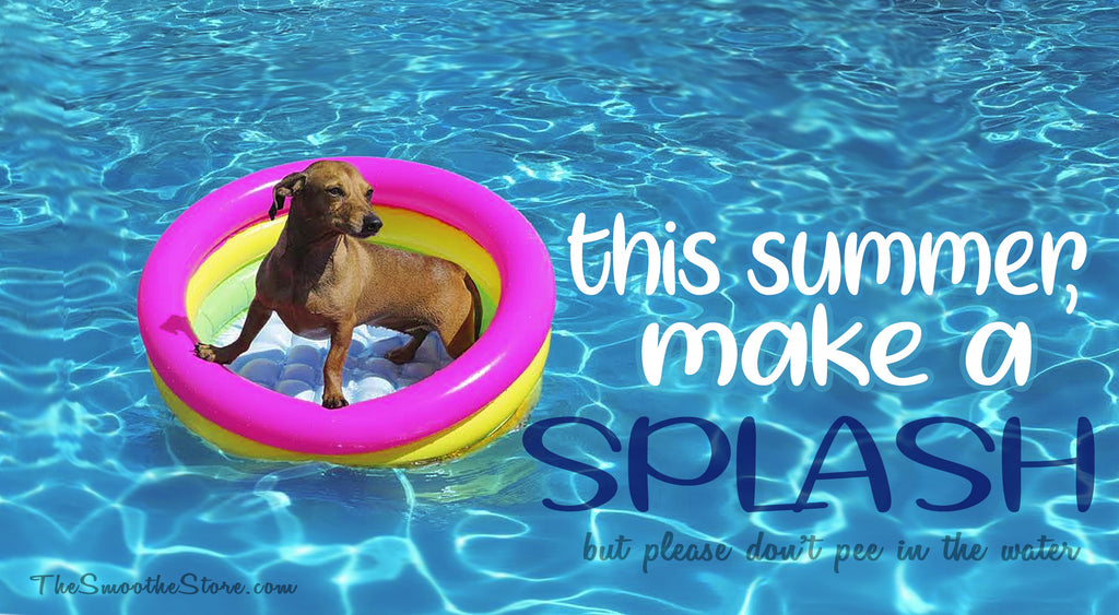 Dachshund Summer Beach Supplies