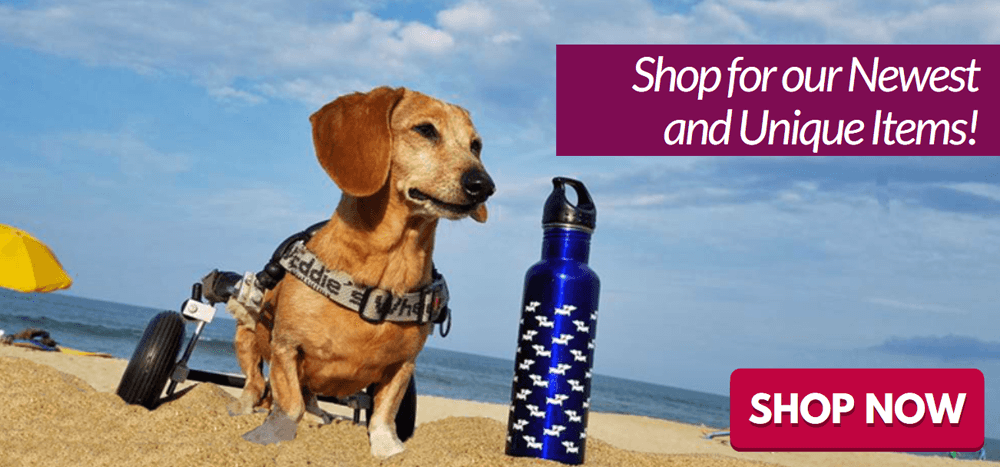 Personalized Dachshund Gifts for Wiener Dog Lovers