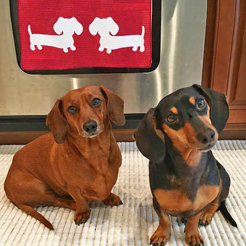 Unique Dachshund Gift Ideas For Wiener Lovers Best Doxie