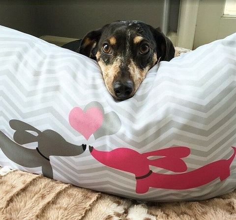 Puppy Love Dachshunds Kissing Pillow - The Smoothe Store