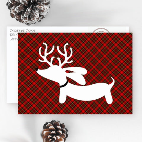 Dachshund Christmas Cards | Plaid Weendeer Reindeer Doxie