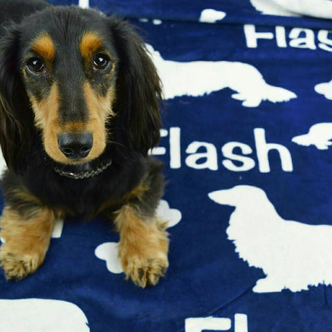 Long Hair Dachshund Personalized Fleece Blanket, The Smoothe Store