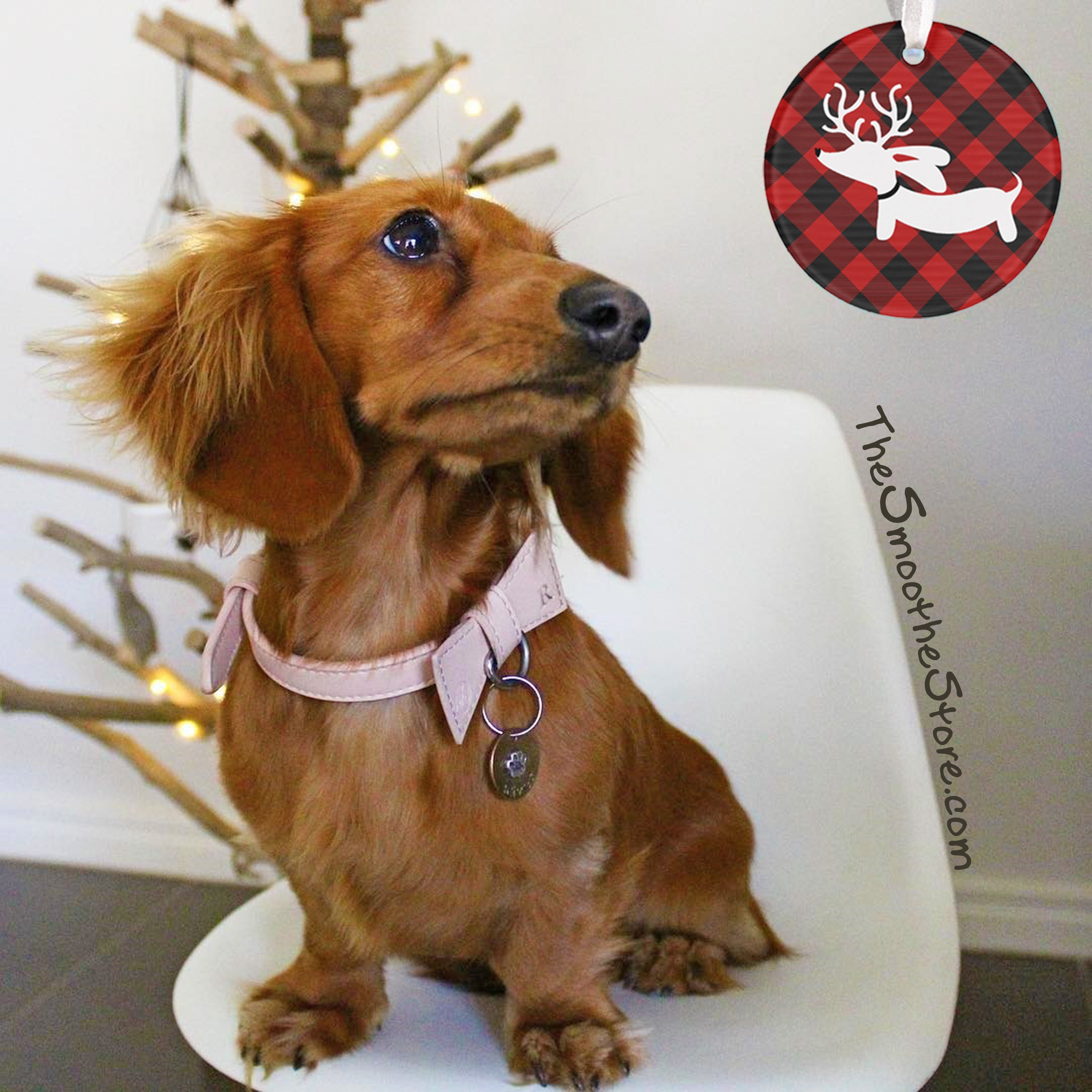 Plaid Reindeer Dachshund Christmas Tree Ornament – The Smoothe Store