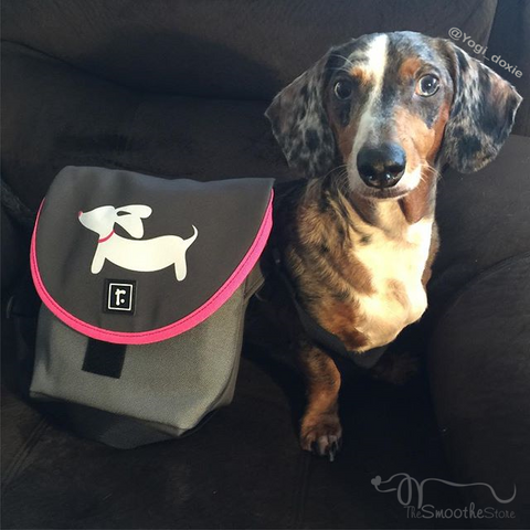 Small Dachshund Messenger Bag - The Smoothe Store - 4
