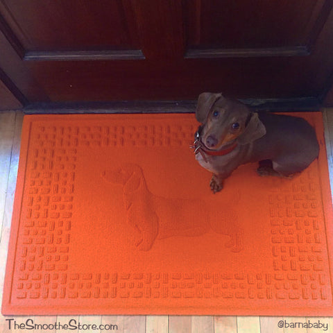 Dachshund Doormats - Colorful and Super Durable, The Smoothe Store