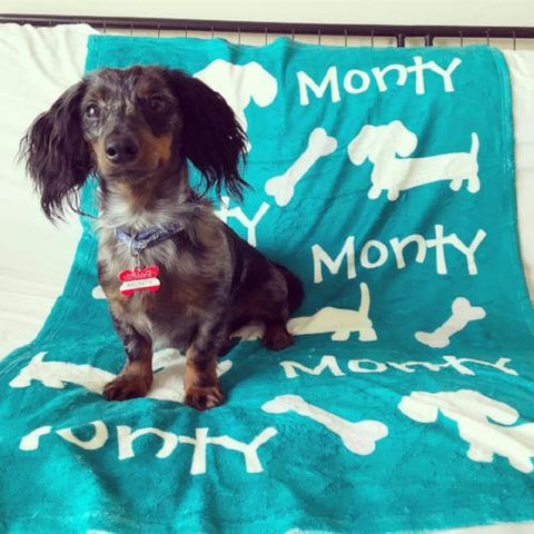 dachshund personalized blanket