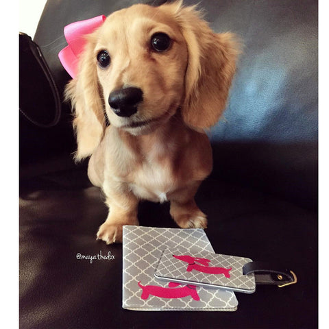Pink or Yellow Dachshund Passport Cover