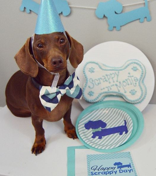 Dachshund Garland, Banners and Bunting, The Smoothe Store