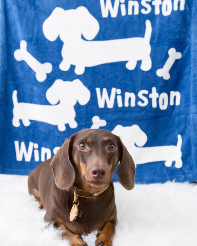 Personalized Dachshund Fleece Blanket