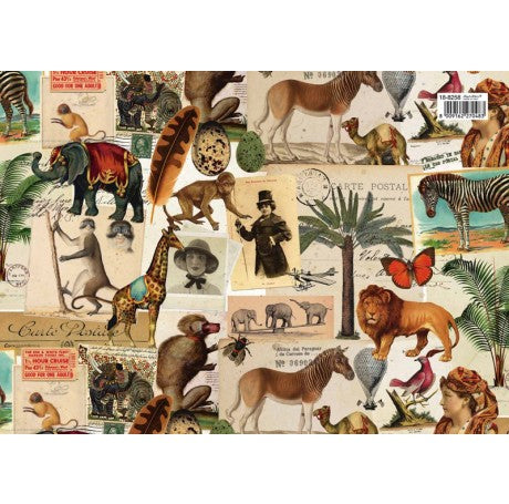 Vintage Safari Gift Wrap