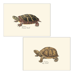 Load image into Gallery viewer, Illustrated 8-pack Boxed Notecard Sets