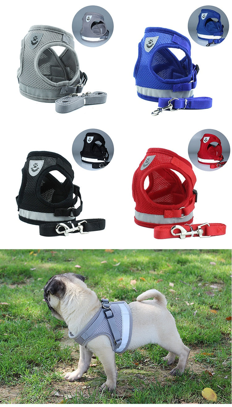dog harness /dog harness leash for Small Medium / dog harness for walking / puppy harness and leash / reflective dog harness