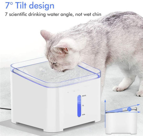 Pet Cat Water Fountain 2L Automatic / Cat Water Dispenser Electric LED Lighting USB Cat / Water Drinker Bowl