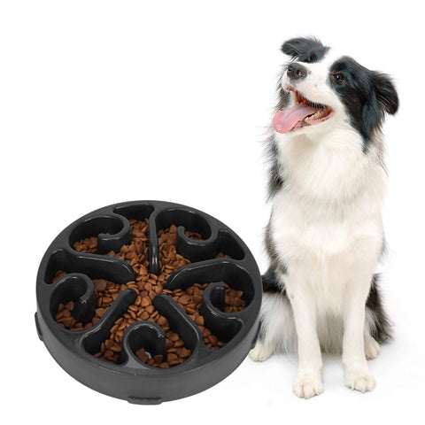 Dog slow feeder dog bowl / treat puzzle / Pet, Dog  Feeding Maze Bowls Prevent Obesity