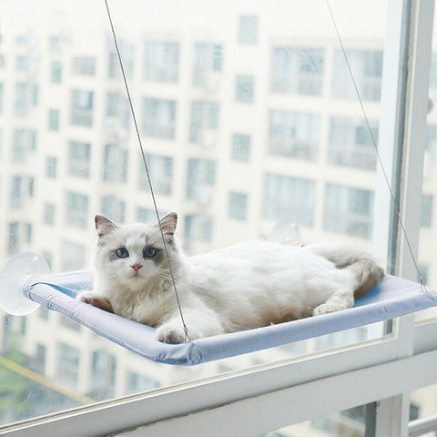 the pefuny window perch for cats  / Cat Hammock / Cat Bed / cat window shelf / cat window bed