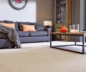 Living Room Carpet Cleaning (45 mins)