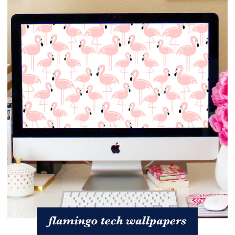 free tech wallpapers for subscribers - flamingo wallpapers