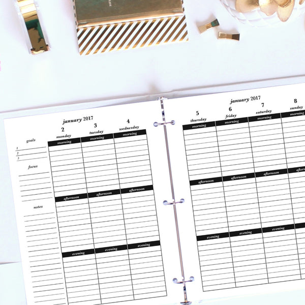2017 Printable Planner: Letter, Morning, Afternoon, Evening - Lined