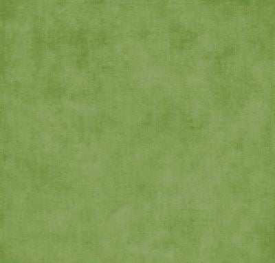 Riley Blake Designs Wideback--Christmas Green<br><STRONG>$16.96/YARD</strong>