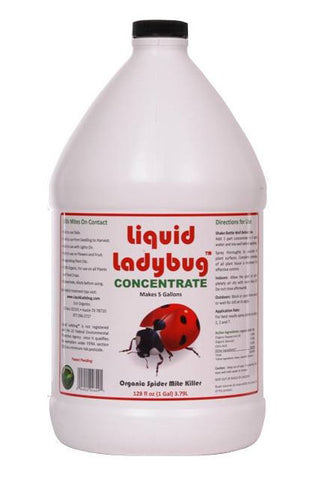 Liquid Ladybug 1 Gallon Concentrate