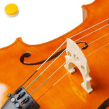 4/4 Wood Cello Bag Bow Rosin Bridge Natural