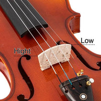 Glarry 4/4 Spruce Panel Violin Bright Natural Wood Back Panel Side Plate Rectangular Case Octagonal Prism Bow