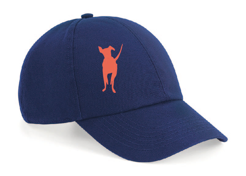 Adult Cap Navy (Colours)
