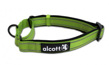 Alcott™ Martingale Collar 18-26 Inches Green Large