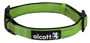 Alcott™ Adventure Collar 18-26 Inches Green Large