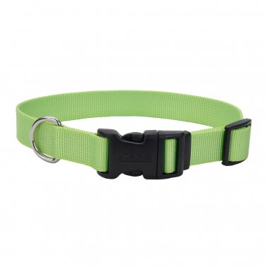 Coastal® Adjustable Dog Collar with Plastic Buckle Lime Color 5/8 Inch X 10-14 Inch