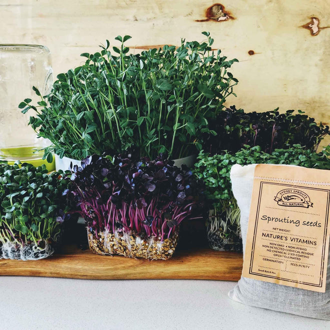 Microgreens. Your home-grown superfood.