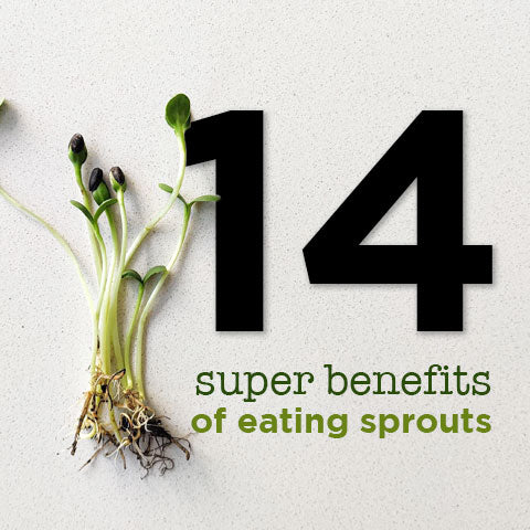 14 super benefits of eating sprouts
