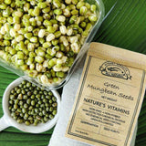 grow your own mungbean sprouts