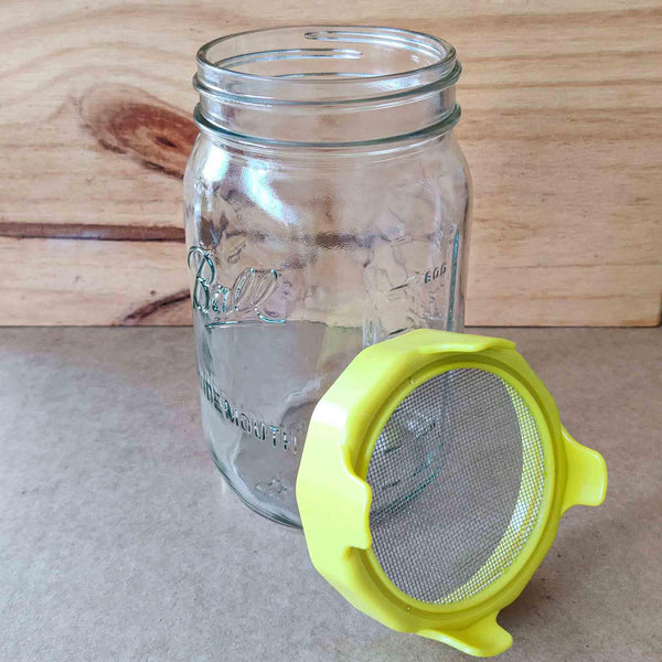 jar and lid sprouting set