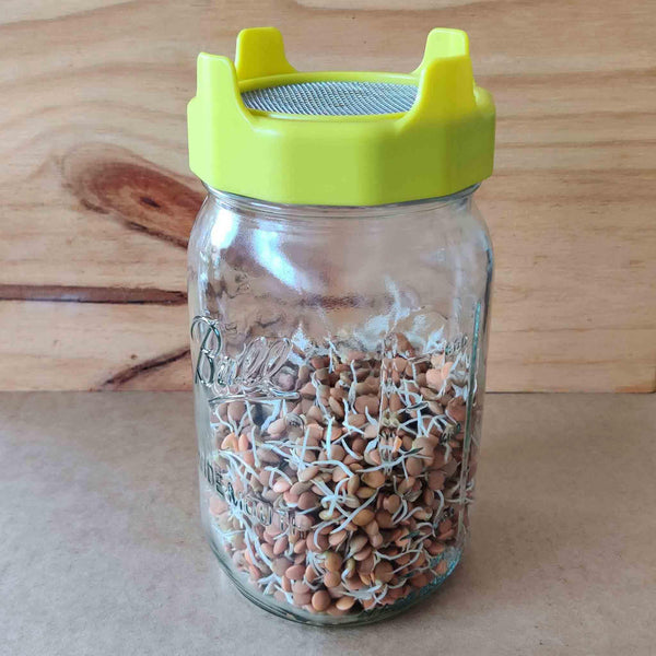 Plastic Strainer Lid and Glass Jar Set