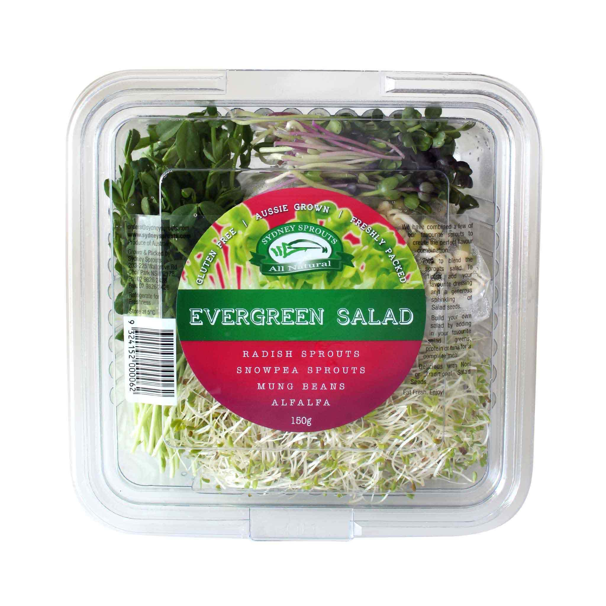 Evergreen Salad