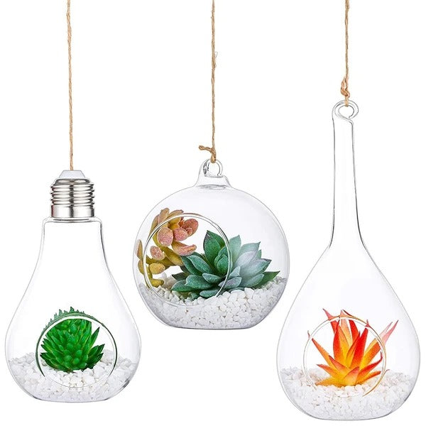 Round, Teardrop, Olive and Bulb Orbs Air Plants Hanger Vase for Succulent, Air ferns